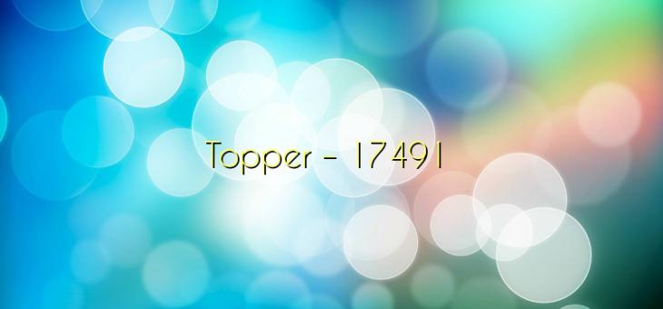 Topper – 17491